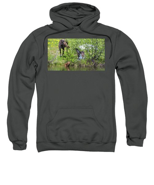 Spring Deliveries  Sweatshirt