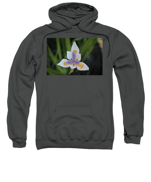 Spring Flower Sweatshirt