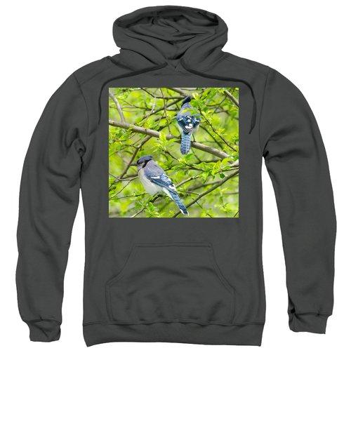 Springtime Pairs Sweatshirt