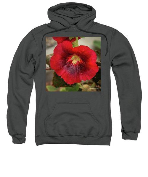 Square Red Hollyhock Sweatshirt