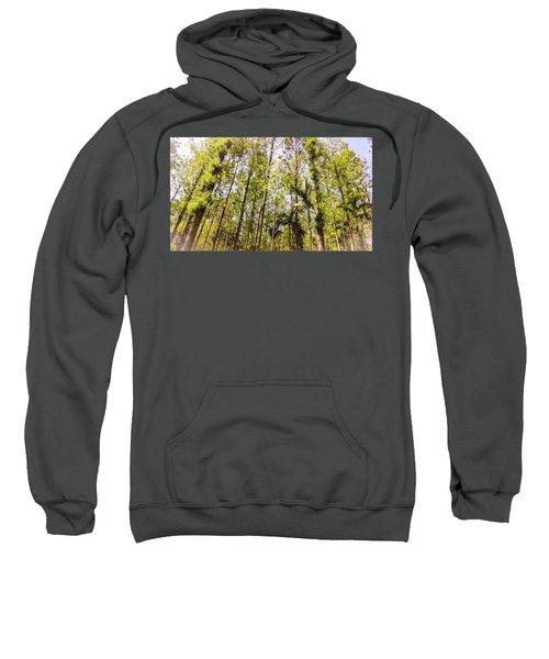 Standing Tall Sweatshirt