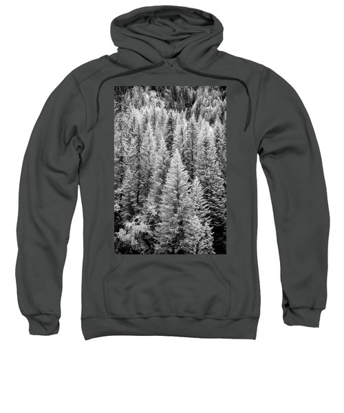 Standing Tall In The French Alps Sweatshirt
