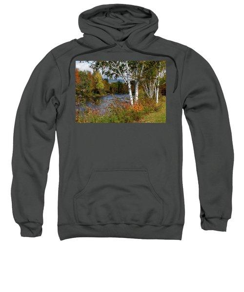 Stark, Nh Fall White Birch  Sweatshirt