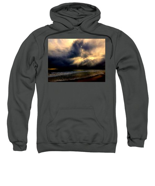 Storm Bird Sweatshirt
