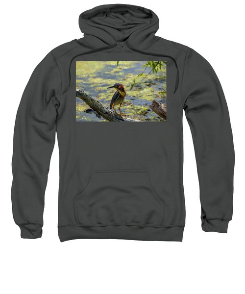 Striking A Pose Sweatshirt