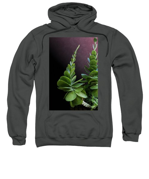 Succulent Spear Sweatshirt