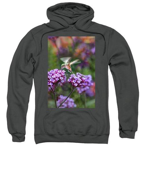 Summer Colors Sweatshirt