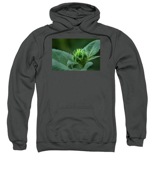 Sunflower Bud Sweatshirt