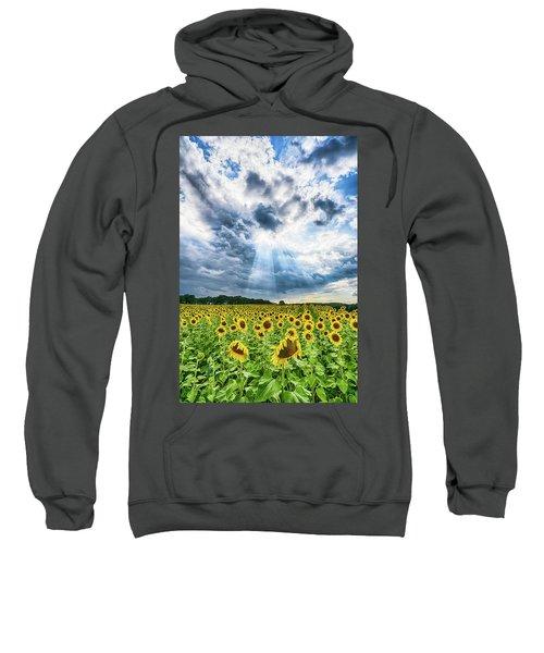 Sunflower Field Sweatshirt