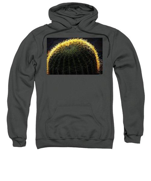 Sunset Cactus Sweatshirt