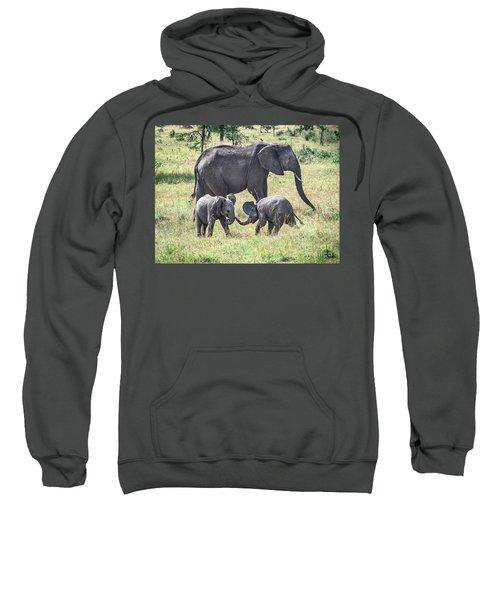 Sweet Babies Sweatshirt