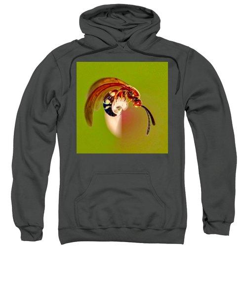 Swirly Wasp Sweatshirt