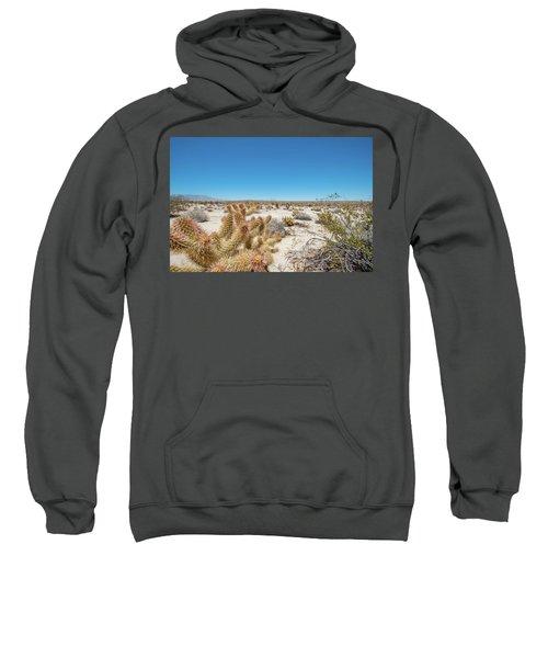 Teddy Bear Cactus Sweatshirt