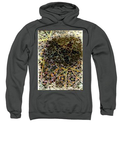Tela 2 Sweatshirt