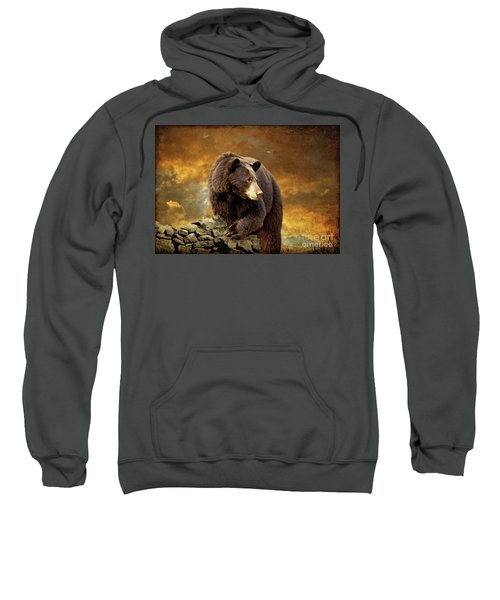 The Bear Went Over The Mountain Sweatshirt