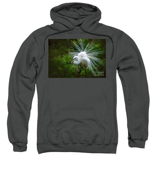 The Display Sweatshirt