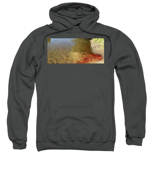 The Earth Is Bleeding Sweatshirt