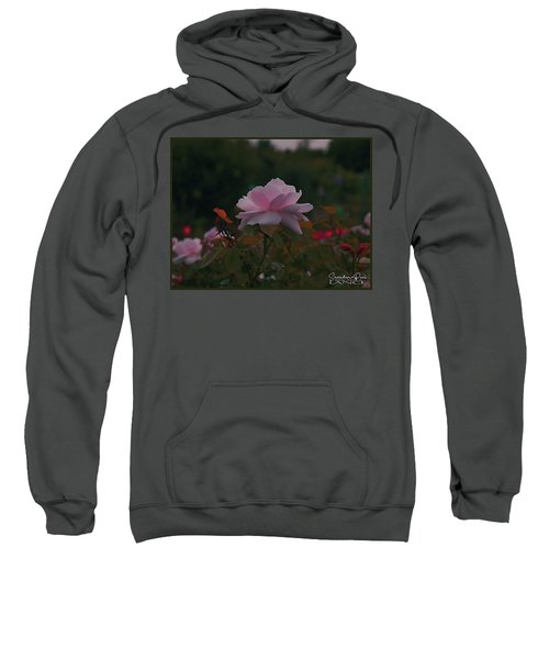The Glowing Rose Sweatshirt