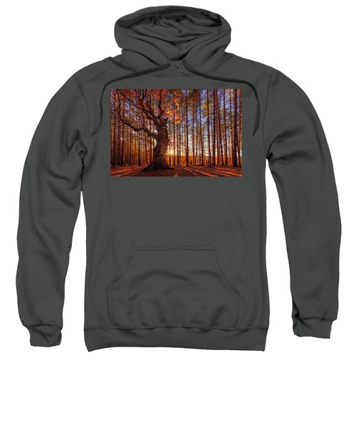 Sweatshirt featuring the photograph The King Of The Trees by Evgeni Dinev