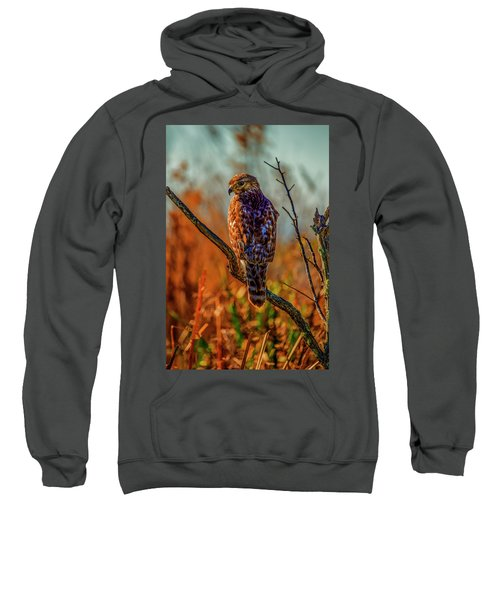 The Look Sweatshirt