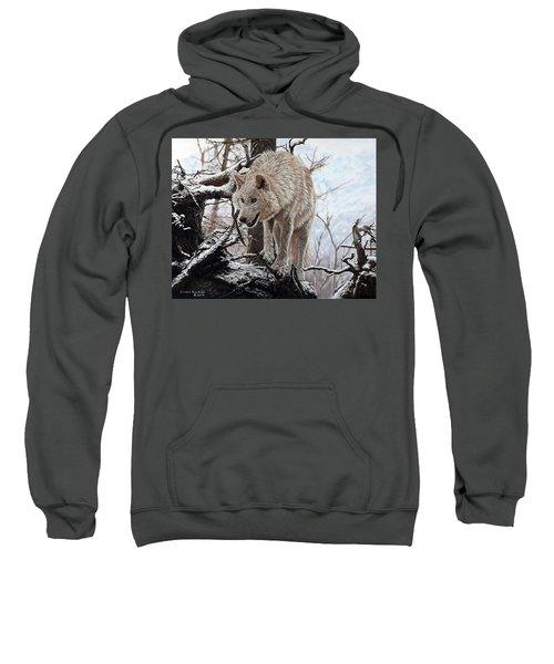 The Lookout Sweatshirt
