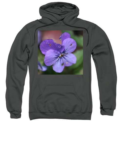 The Raggedy Viola Sweatshirt