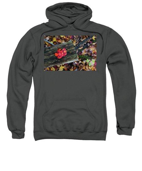 The Reason They Call It Fall Sweatshirt