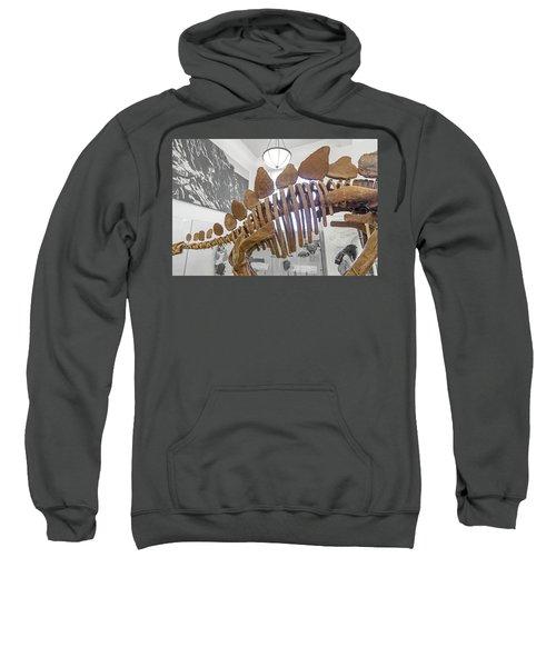 The Rib Cage Sweatshirt