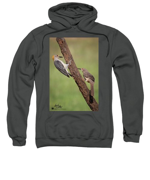 The Stare Down Sweatshirt