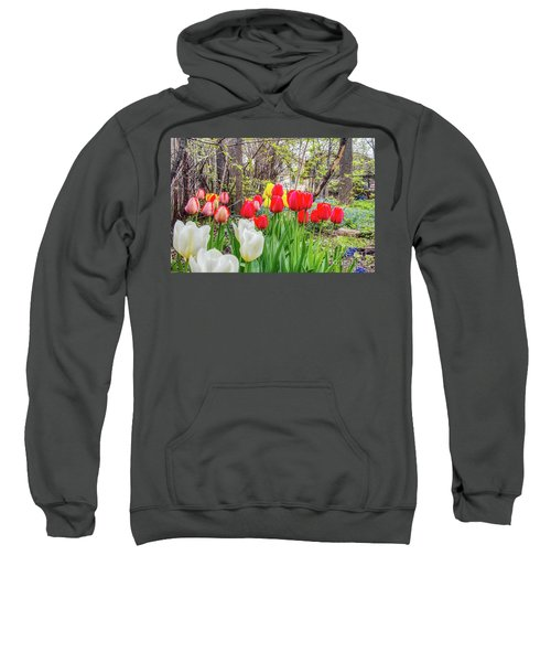 The Tulips Are Out. Sweatshirt