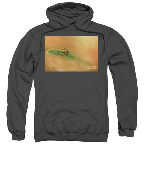 The Voyage Of Discovery Sweatshirt