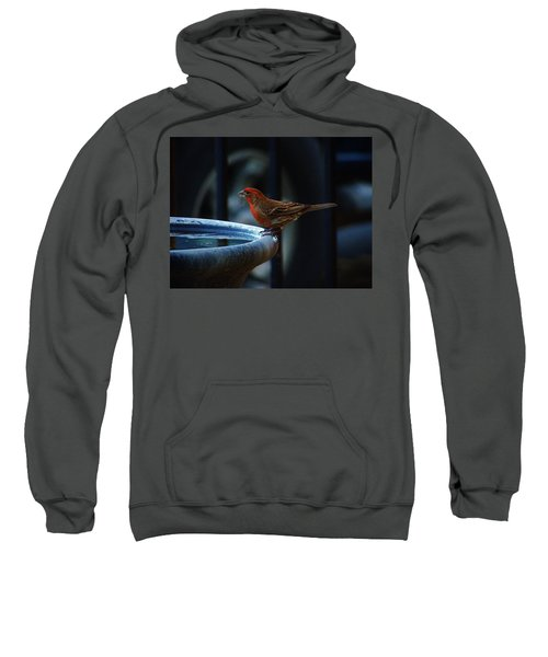 Thirsty Sweatshirt
