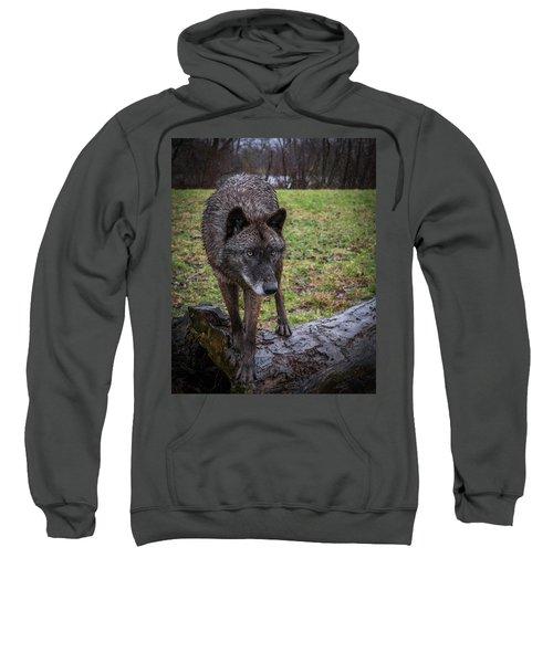 This Is My Log Sweatshirt
