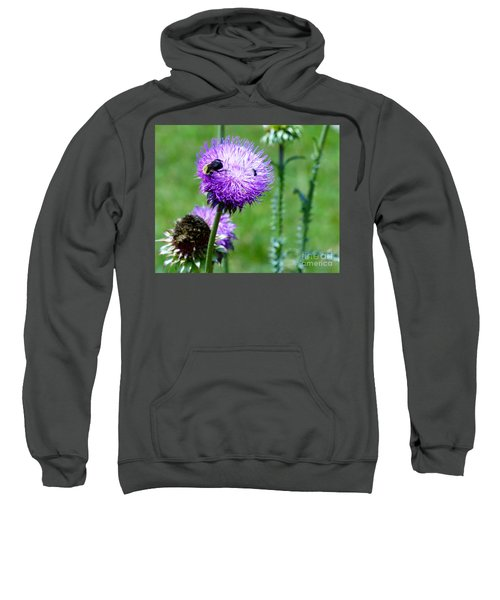 Thistle Visitors Sweatshirt