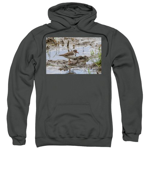 Three-banded Plover Sweatshirt