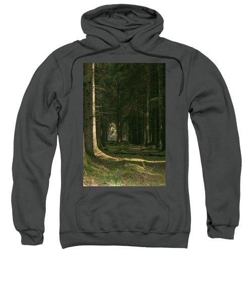 Through Sweatshirt