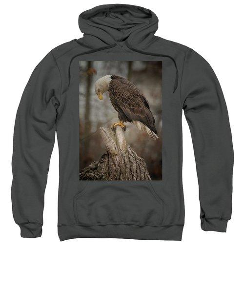 Tired Eagle Dad  Sweatshirt