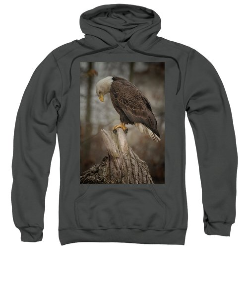 Tired Eagle Dad  Sweatshirt
