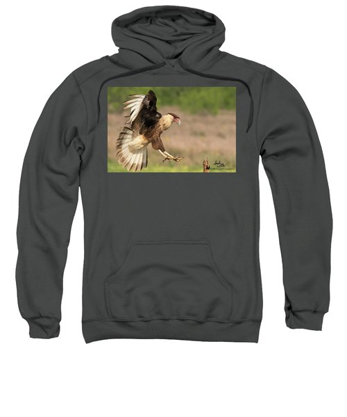 Touching Down Sweatshirt