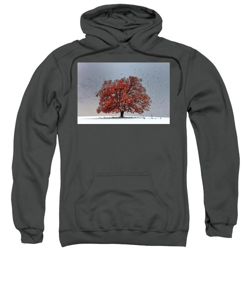 Sweatshirt featuring the photograph Tree Of Life by Evgeni Dinev