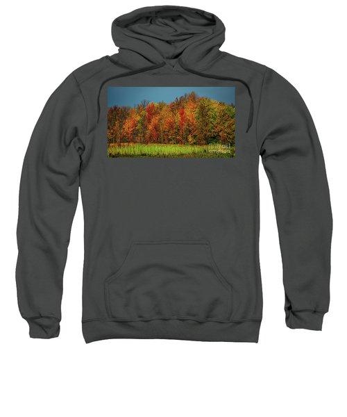 Tug Hill Colors Sweatshirt