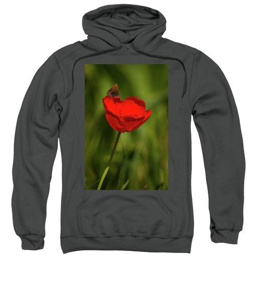Tulip And Skipper Sweatshirt