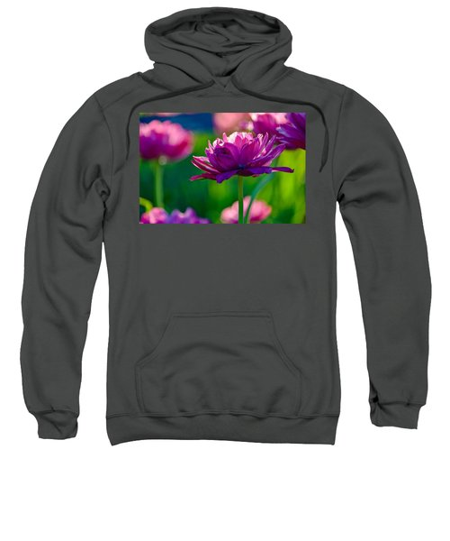 Tulips In Bloom Sweatshirt
