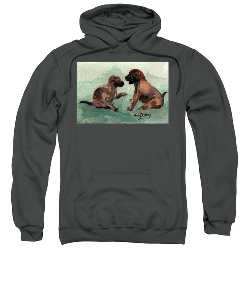 Two Malinois Puppies Sweatshirt