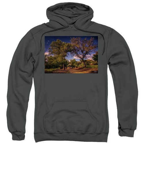 Two Old Oak Trees At Sunset Sweatshirt