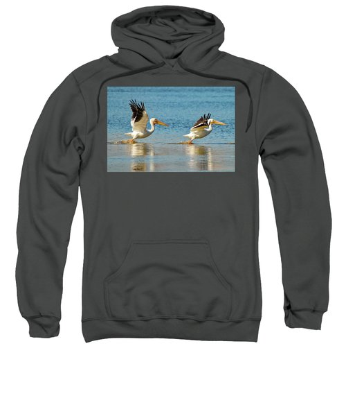 Two Pelicans Taking Off Sweatshirt