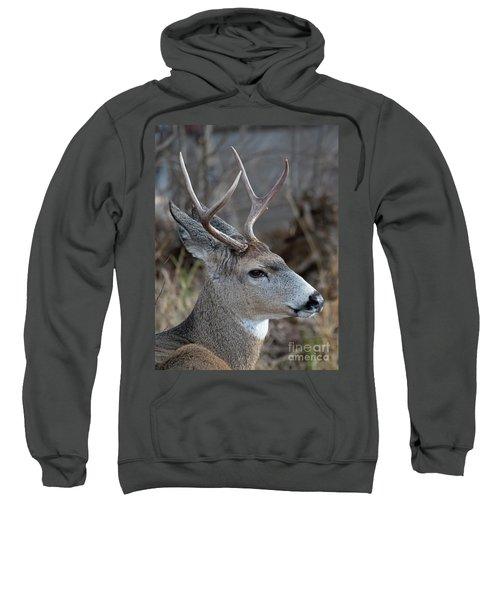 Two-point Profile Sweatshirt