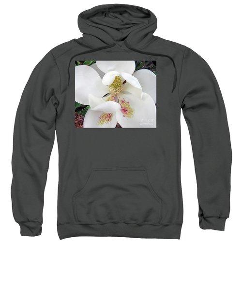 Unfolding Beauty Of Magnolia Sweatshirt
