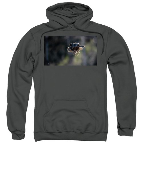 Ural Owl Flying Against The Light To Catch A Prey  Sweatshirt