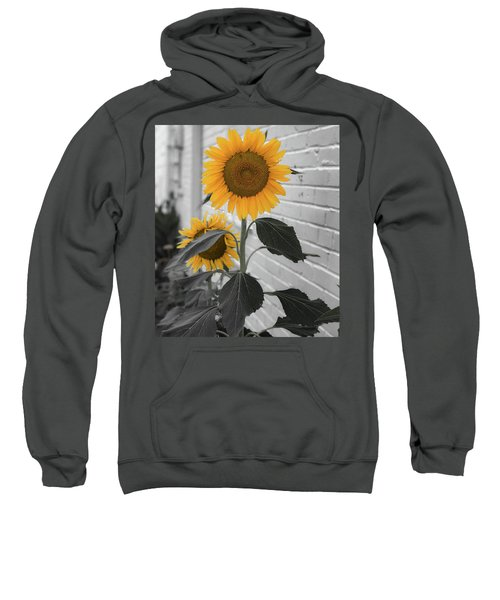 Urban Sunflower - Black And White Sweatshirt